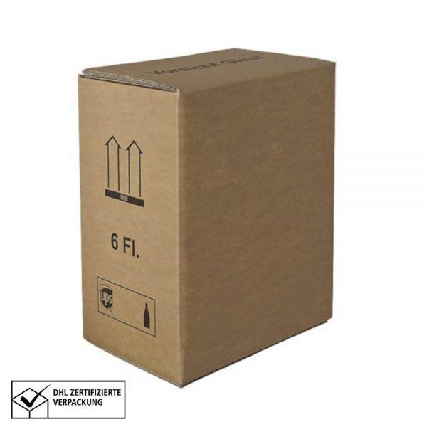 10 Stück: 310x210x380 mm 6er Kombiwell Flaschenkarton Basic